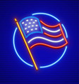united states of america vector image