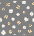 white daisies and animal paws seamless pattern vector image vector image