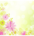 Abstract Flower Background With Leaf vector image vector image