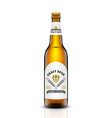 beer bottle set vector image