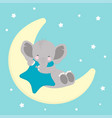 elephant sleep on moon vector image