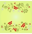 Pattern of natural ingredients vector image vector image
