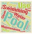 Basic Pool Maintenance Tips text background vector image vector image