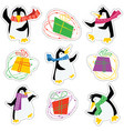 dancing xmas penguins in a bright scarves and vector image