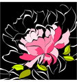 decorative background with peony flower vector image