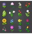 Flowers - set of colorful isolated icons vector image vector image