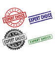 grunge textured expert choice seal stamps vector image vector image