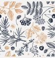 hand drawn berries backdrop in engraved style vector image vector image