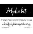 modern calligraphy vintage handwritten vector image vector image