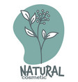 natural cosmetics with bio ingredients vector image
