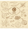 Set of spices cuisines of Thailand on old paper in vector image vector image