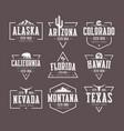 set of us states vintage t-shirt vector image