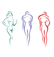 beautiful woman symbols set vector image
