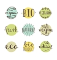 Bio organic natural Set of hand drawn vector image vector image
