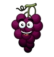 Branch of purple grape vector image vector image