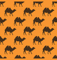 camel seamless pattern vector image vector image