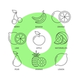 Organic fruit thin line icons set vector image
