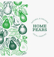 pear design template hand drawn garden fruit vector image