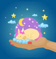 sleeping colorful unicorn fantasy magical animal vector image
