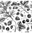wild berries sketches seamless pattern hand drawn vector image vector image