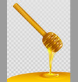 wooden honey dipper and honey on transparent vector image