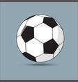 a soccer soccer-ball vector image