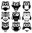 Cute black and white owls set vector image vector image
