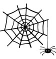 doodle spider and web - igraphic element for vector image