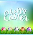 easter eggs on fresh green grass vector image vector image