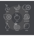 fruit thin line icons set on dark background vector image