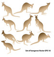 kangaroo1 vector image vector image