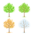 season trees vector image vector image