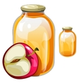 Banks with delicious juice or jam and apple vector image vector image