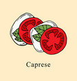 caprese in cartoon style vector image