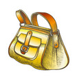 fashion stylish hand luggage bag color vector image vector image