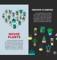 house plants and indoor flowers promotional vector image vector image