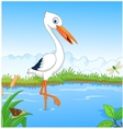 White stork searching food vector image vector image