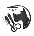 grooming and washing dogs vector image vector image