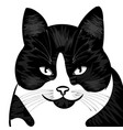 logo cat for t-shirt design or outwear vector image vector image