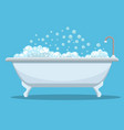 modern bath isolated on background vector image