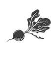 radish glyph icon vector image vector image
