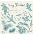 Set with Christmas plants Botanical Branch vector image vector image