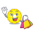 shopping character pineapple slice fresh vector image