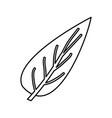 sketch contour of big aovada leaf plant vector image vector image