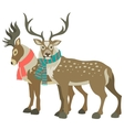 Two cute reindeers vector image