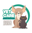 veterinary pet clinic logo vector image