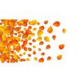 autumn golden leaf frame template tree fallen vector image vector image