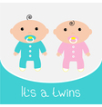 Baby shower card Its a twins boy and girl vector image vector image