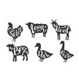 farm animals silhouettes retro labels set beef vector image vector image