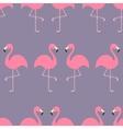 Flamingo Seamless Pattern Exotic tropical bird vector image vector image